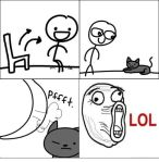 gato pedo cara