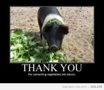 gracis por convertir Vegetales en Tocino