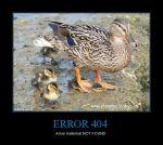 CR_306746_error_404