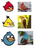Angry Birds En el mundo real