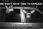 No hay tiempo para explicaciones solo sube al auto