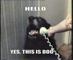 Hola... si habla con Perro...