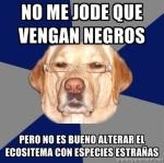 El perro Racista