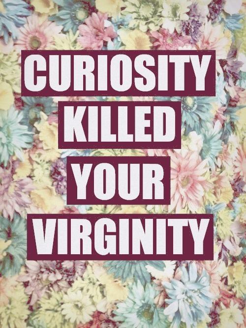 La curiosidad mato a tu virginidad