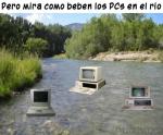 Los pcs en el rio