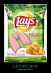 Lays Pulmon