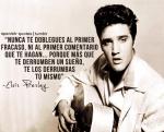 Maestro Elvis