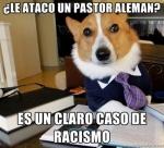 El perro Abogado
