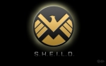 SHIELD.... facepalm